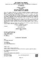 AUT. TRASPORTO FP 881 SC